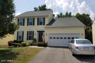 6044 Hot Spring Lane, Fredericksburg, VA 22407 (#SP9752465) :: LoCoMusings