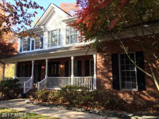 22 Indian View Court, Stafford, VA 22554 (#ST8635781) :: Pearson Smith Realty