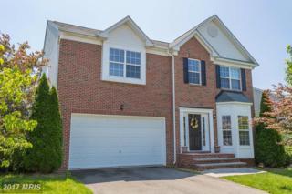 11 Foggy Field Lane, Fredericksburg, VA 22406 (#ST9667602) :: Pearson Smith Realty