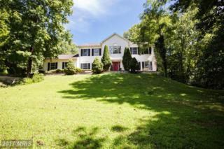 60 Windermere Drive, Stafford, VA 22554 (#ST9743708) :: Pearson Smith Realty