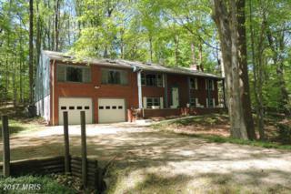 103 West Wildwood, Fredericksburg, VA 22405 (#ST9776389) :: Pearson Smith Realty