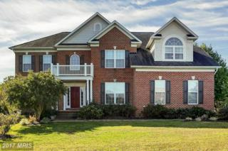 2 Ironwood Road, Fredericksburg, VA 22405 (#ST9790995) :: LoCoMusings
