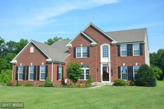 11030 Forest View Lane, Easton, MD 21601 (#TA9724523) :: Pearson Smith Realty