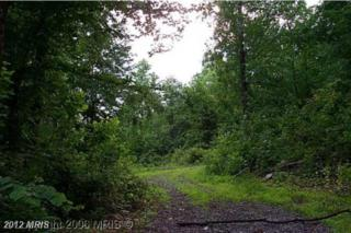 Reed Road, Knoxville, MD 21758 (#WA6070419) :: Pearson Smith Realty