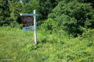 8307 Prophet Acres Road, Fairplay, MD 21733 (#WA7150911) :: Pearson Smith Realty
