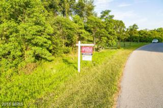 8212 Prophet Acres Road, Fairplay, MD 21733 (#WA7151465) :: Pearson Smith Realty