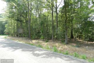 Placid Point Rd., Colonial Beach, VA 22443 (#WE8410490) :: LoCoMusings