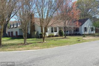 3220 Riverview Drive, Colonial Beach, VA 22443 (#WE9836597) :: Pearson Smith Realty