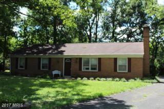 117 Oakwood Court, Winchester, VA 22601 (#WI9746520) :: Pearson Smith Realty