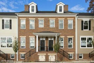 717 S. Braddock St, Winchester, VA 22601 (#WI9768890) :: Pearson Smith Realty