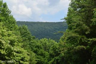 Skyline Forest Drive, Front Royal, VA 22630 (#WR9698042) :: Pearson Smith Realty