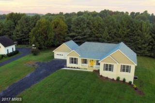 481 Bowling View Road, Front Royal, VA 22630 (#WR9779108) :: Pearson Smith Realty