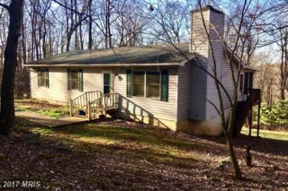 601 Summit Point Drive, Front Royal, VA 22630 (#WR9853653) :: Pearson Smith Realty