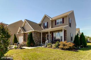 702 Woodland Drive, Baltimore, MD 21225 (#AA9693486) :: Pearson Smith Realty