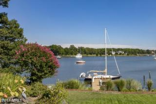 619 Beach Drive, Annapolis, MD 21403 (#AA9760431) :: Pearson Smith Realty