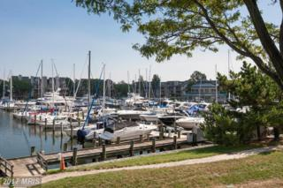 7046 Harbour Village Court #102, Annapolis, MD 21403 (#AA9781061) :: LoCoMusings
