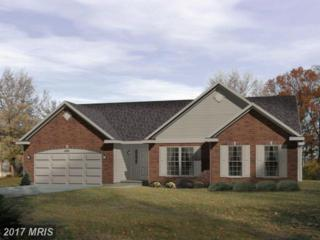 0 Viper Road, Inwood, WV 25428 (#BE8575128) :: Pearson Smith Realty