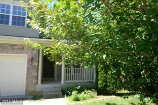 219 Maple Leaf Drive, Rising Sun, MD 21911 (#CC9724923) :: LoCoMusings