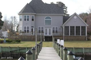 12548 Neale Sound Drive, Cobb Island, MD 20625 (#CH8031116) :: Pearson Smith Realty