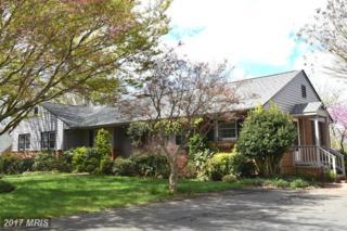 1134 Oaklawn Drive, Culpeper, VA 22701 (#CU9698146) :: Pearson Smith Realty