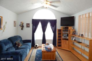 19075 Allens Lane, Culpeper, VA 22701 (#CU9738181) :: LoCoMusings