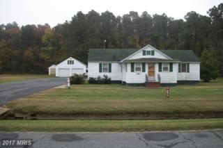 2540 Lakesville Crapo Road, Crapo, MD 21626 (#DO9514457) :: Pearson Smith Realty