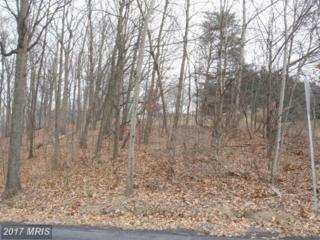 32 Theodore Drive, Chambersburg, PA 17202 (#FL7698341) :: Pearson Smith Realty