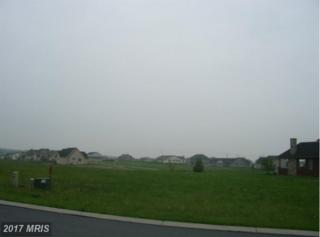 114-C Starr Avenue, Chambersburg, PA 17202 (#FL7723177) :: LoCoMusings