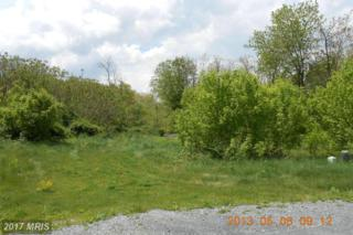 LOT 25 Apple Jack Court, Mercersburg, PA 17236 (#FL8073755) :: Pearson Smith Realty