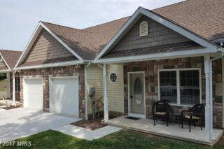 95 Old Mill Road, Waynesboro, PA 17268 (#FL8678902) :: LoCoMusings