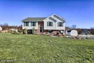 1353 Mallard Drive E, Chambersburg, PA 17202 (#FL9650402) :: Pearson Smith Realty