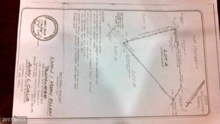 Heritage Eagle Lane NE, Bealeton, VA 22712 (#FQ7980387) :: LoCoMusings