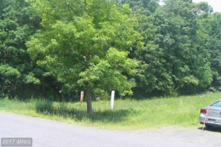 Richie Road, Midland, VA 22728 (#FQ8585149) :: Pearson Smith Realty