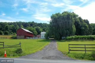 17301 Sabillasville Road, Sabillasville, MD 21780 (#FR9683002) :: Pearson Smith Realty