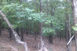Black Oak Road,Lot 7, Warfordsburg, PA 17267 (#FU8143771) :: Pearson Smith Realty