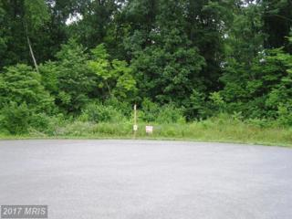 0 Joline Drive, Clear Brook, VA 22624 (#FV7826824) :: Pearson Smith Realty