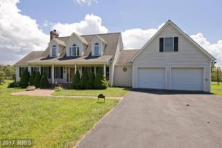 163 Logger Drive, Gore, VA 22637 (#FV9727036) :: Pearson Smith Realty