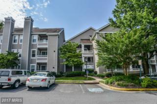 14309 Climbing Rose Way #204, Centreville, VA 20121 (#FX9767734) :: Pearson Smith Realty