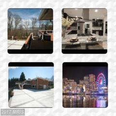 7205 Park Terrace Drive, Alexandria, VA 22307 (#FX9789376) :: Pearson Smith Realty