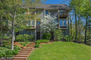 4 Lakeview Court, McHenry, MD 21541 (#GA9514546) :: Pearson Smith Realty