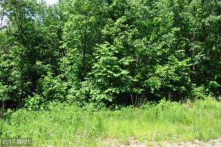 Windswept Lane, Grantsville, MD 21536 (#GA9517176) :: LoCoMusings