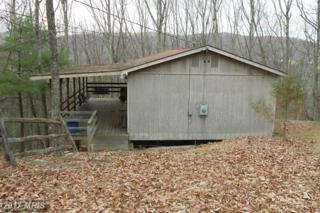 21 Cedarwood Drive, Mathias, WV 26812 (#HD8513386) :: Pearson Smith Realty