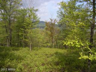 FARM #19 Bear Garden Trail, Capon Bridge, WV 26711 (#HS7836407) :: LoCoMusings