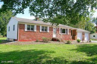 1131 River Road, Sykesville, MD 21784 (#HW9772077) :: Pearson Smith Realty