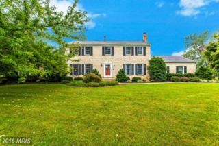 1203 Cartley Court, Woodbine, MD 21797 (#HW9777422) :: Pearson Smith Realty