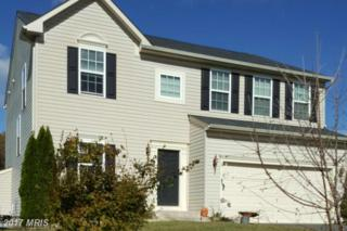 393 Maddex Drive, Shepherdstown, WV 25443 (#JF9673551) :: Pearson Smith Realty