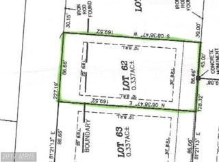 121 Dogwood Drive, Galena, MD 21635 (#KE7804601) :: Pearson Smith Realty
