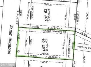 125 Dogwood Drive, Galena, MD 21635 (#KE7804610) :: Pearson Smith Realty