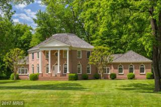 19511 Barnwood Court, Leesburg, VA 20175 (#LO9683803) :: Pearson Smith Realty