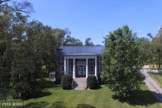 21223 Unison Road, Middleburg, VA 20117 (#LO9747504) :: Pearson Smith Realty